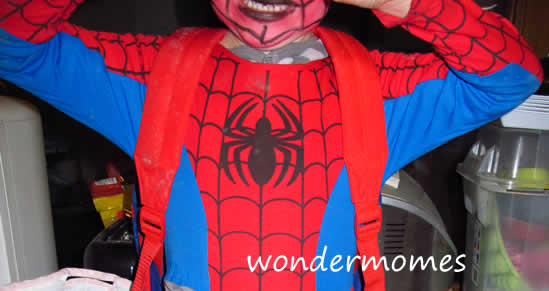 Spider WonderKid