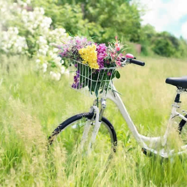 bicyclette fleurs campagne