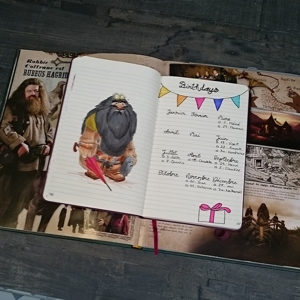 collection anniversaire bullet journal Harry Potter